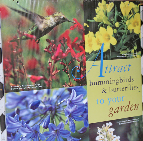 sign of hummingbirds and butterlies