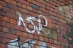 use bf (pranged) Tags: pool rose swimming graffiti greg 26 leeds bank crew kens em ep bsa kus 2061 tsm tfa phuck lank phibs thk