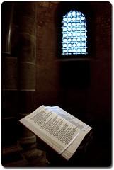 Book | Available light (fxp) Tags: light church germany geotagged deutschland book christ basilica religion cologne köln deu nordrheinwestfalen available basilika neumarkt stgereon geo:lat=5094334920 geo:lon=694590820