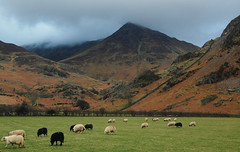 Whiteless Pike from Crummock Water (JohnOakeyDesign) Tags: england lake mountains nature water walking countryside walks britain country lakedistrict hills wainwright cumbria fells fell buttermere grasmoor crummock summits cumbrian rannerdale