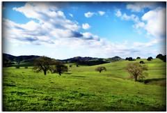 Erin Go Bragh.... (scrapping61) Tags: california rural landscape explore gilroy 2009 amazingamateur proudshopper proudexcellence amazingexcellence scrapping61 absolutelystunningscapes finephotoshopdesign novavitanewlife novaexcellence miasbest musicsbest worldclassnaturephoto thenewselectbest flickrenvythebesttm daarklands