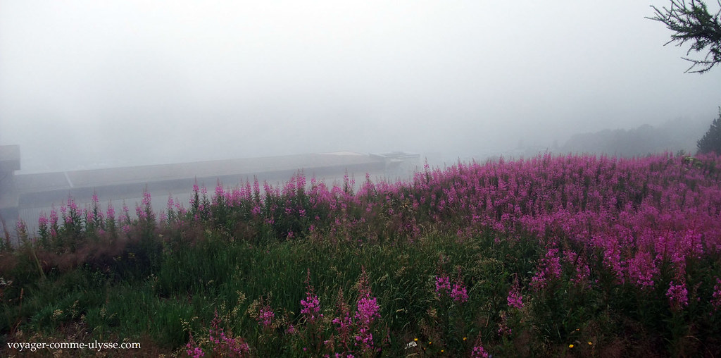 Le brouillard était très présent