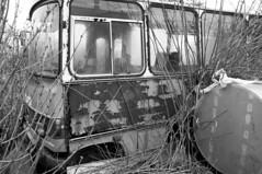 bus (Nisse Nilsson) Tags: bw bus skne iron europa europe sweden schweden skandinavien sverige lantern scandinavia ven buss sude svezia hven landskrona 4nikon300mmvr2f2 sportxtremextrempornobabebwblackwhitenikon1424mmnikon2470mmnikon70200mmnikon50mmf1 schwedensudesverigesveziaswedeneuropaeuropscandinavinskandinaviensknelandskronanikonnikond4snikond4car 8photographerofswedengmailcomnissenilssonsverigenu 8nikon600mmf4hifhelsingborgfalkenbergroarhansenhenriklarssonfotbollnikon400mm2