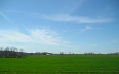 Wispy clouds. (Haley Love Bug) Tags: sky grass treeline