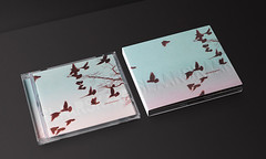 CD-Cover Development, Mikael Simpson - Slaar Skaar (muggieramadani) Tags: logo design identity packaging cdcover brand mikaelsimpson mikkelbache muggieramadanidesignstudio slaarskaar