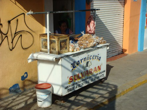 Meat vendor in Sayula.