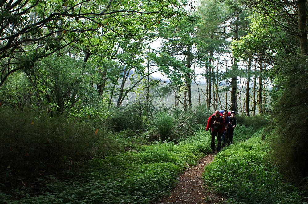 03-全長6.7公里的林道