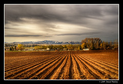 Country Morning - HDR (James Neeley) Tags: rural landscape bravo searchthebest farm idaho hdr idahofalls ammon plowedfield photomatix 5xp jamesneeley