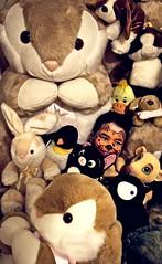 Where's Wally? (Ana Luz) Tags: portrait people dog pet rabbit girl face animal cat penguin facepainting kid paint child lyon retrato gato cachorro criança menina coelho pinguim leão analuz facepainted bichodepelucia wormplushanimals wormplush