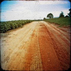 Southern Vision (evanleavitt) Tags: road county blue red film look field by rural ga vintage georgia jack evans skies farm south shed inspired olympus hasselblad dirt walker clay american faux morgan pastoral delano fsa the e510 bostwick nonhdr