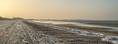 Plage d'hiver (of-etoile1) Tags: morning beach plage froid glace matin charentemaritime