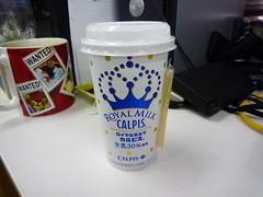 カルピス ロイヤルミルク カルピス