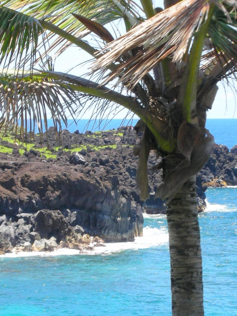 c41de91d81 RoadToHanaMay09-150 (mickeysail) Tags  ocean bridge beach hawaii waterfall  sand surf waves
