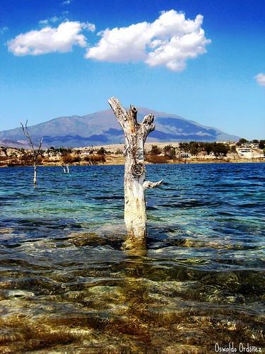 Laguna y Cerro del Potosí.