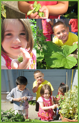 Children's Veggie Garden by DDA604.