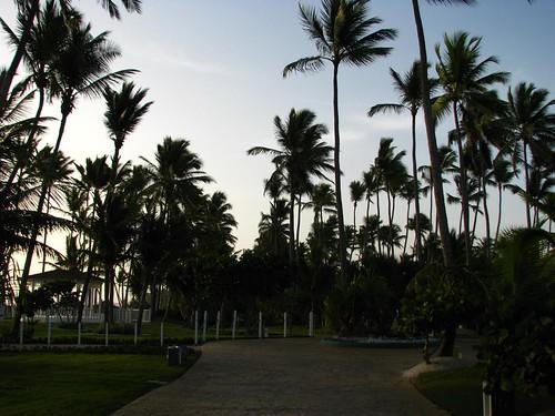 Early morning beach stroll