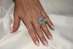 IMG_1167 (erikadefreitas) Tags: anillos
