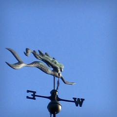Mermaid Ave. (Kultur*) Tags: california ca northerncalifornia cali monterey pg mermaid pacificgrove mermaidavenue