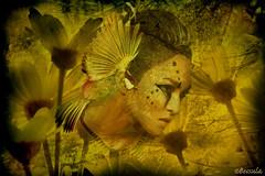 The seekers of the spring (Bessula) Tags: woman flower color bird art natur php photomontage soe mywinners innamoramento anawesomeshot colorphotoaward ysplix memoriesbook bessula colourartaward awardtree atqueartificia colorsinourworld sensationalphoto flickraward artistictreasurechest themonalisasmile musicsbest