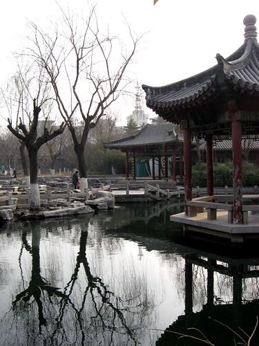 Five Dragon Park 6