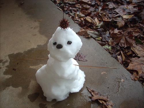 SNOW 2600