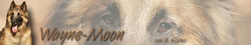 .jpg 04.03.09 Wayne-Moon banner