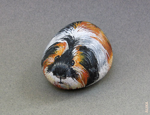 Hand painted rock. Silkie guinea pig.