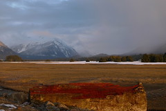 Evening on the Marsh, Juneau, Alaska