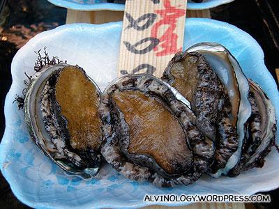 Some weird clam