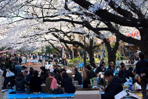 Ueno Park 12