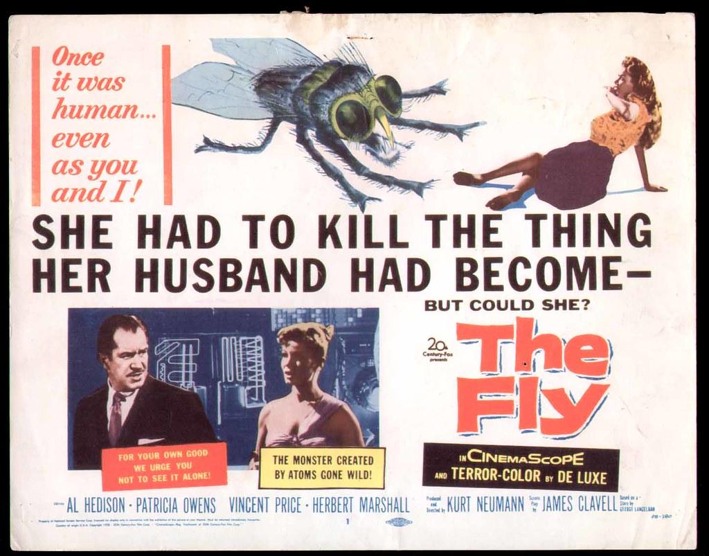 fly_tc