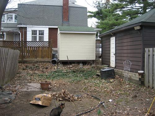 Backyard mayhem April 18