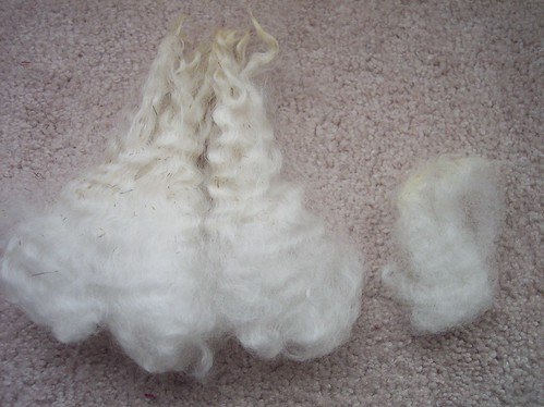 Cotswold (left), Columbia (right) fibres