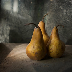 Trois poires (borealnz) Tags: light fruit square three pears bokeh basement dust ripe bsquare blemished borealnz
