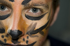 Tiger Face (craigmdennis) Tags: face dof tiger 365 facepaint 365days