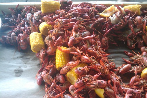 crawfish 3