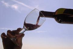 Malbec, el vino emblemático de la Argentina, es de Mendoza