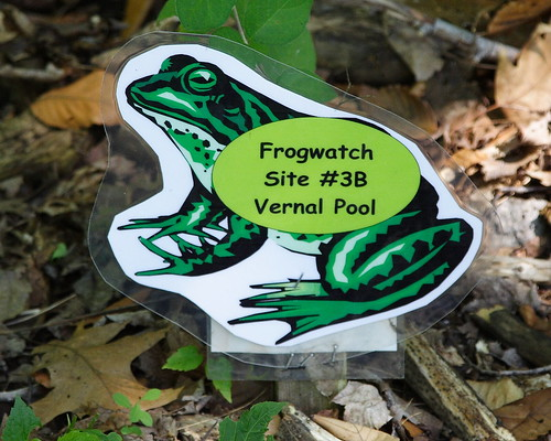 FrogWatch Sign