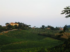 Tuscany (janetfo747) Tags: italy green farmhouse vineyard farm orchard tuscany grapes olives cypress picnik theperfectphotographer worldwidelandscapes flickrestrellas
