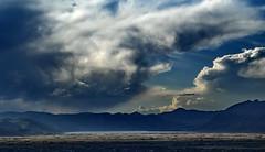 juliaca (chihuanco) Tags: peru aves nubes puno juliaca americadelsur