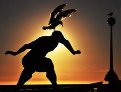 0156-Surfero y gaviota (La Corua) (Eduardo Arias Rbanos) Tags: sculpture contraluz nikon seagull escultura galicia galiza d100 gaviota acorua lacorua surferos eduardoarias eduardoariasrbanos