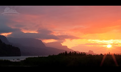 Butterflies in the air.. (Jesse Estes) Tags: sunrise butterflies columbiarivergorge jesseestes jesseestesphotography