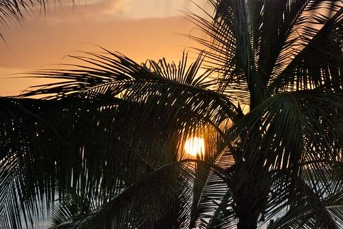 Sunset from Tiki's