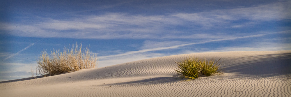 White Sands National Monument - Dunes