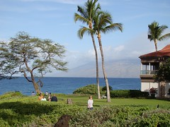 maui big island resort beaches