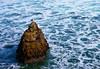 The Lone Scavenger (Kyle.Christensen) Tags: ocean santa rock contrast canon island eos bay pacific bright d seagull cruz 1750 40 tamron mywinners ultimateshot flickraward montereybasanta