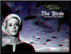 The Birds - Conversion (starg82343) Tags: film birds poster 3d scary model conversion brian anaglyph stereo actress horror wallace alfred hitchcock teaser tippi 2d3d hedren