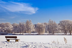 View on a frozen lake (Fabrizio Zago - Photography & media) Tags: schnee trees winter sky cloud lake snow tree verde green nature water alberi clouds germany lago deutschland see nikon wasser nuvole nuvola natural d70 natur lakes himmel wolke wolken natura cielo neve nrw acqua inverno baum germania mnsterland borken westfalen westphalia laghi bumen prbsting hoxfeld prbstingsee vosplusbellesphotos fabriziozago