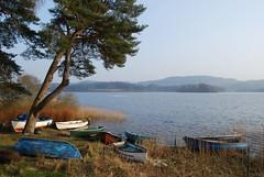 Loch Ard (magaroonie) Tags: trees boats scotland trossachs lochard kinlochard distantswans