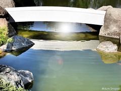 SUNBURST UNDER TAIKO BASHI (lizardgal) Tags: bridge arizona reflection phoenix olympus sunburst hdr corel 3xp taikobashi mikemimages